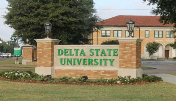 courses offered in delsu
