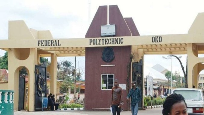 courses offered in oko poly and their cut off marks